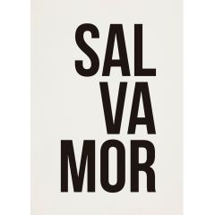 Poster Salvamor
